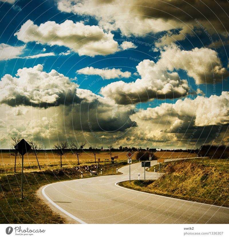 Sky Nature Tree Landscape Clouds Environment Street Spring Grass Horizon Arrangement Transport Speed Beautiful weather Planning Target