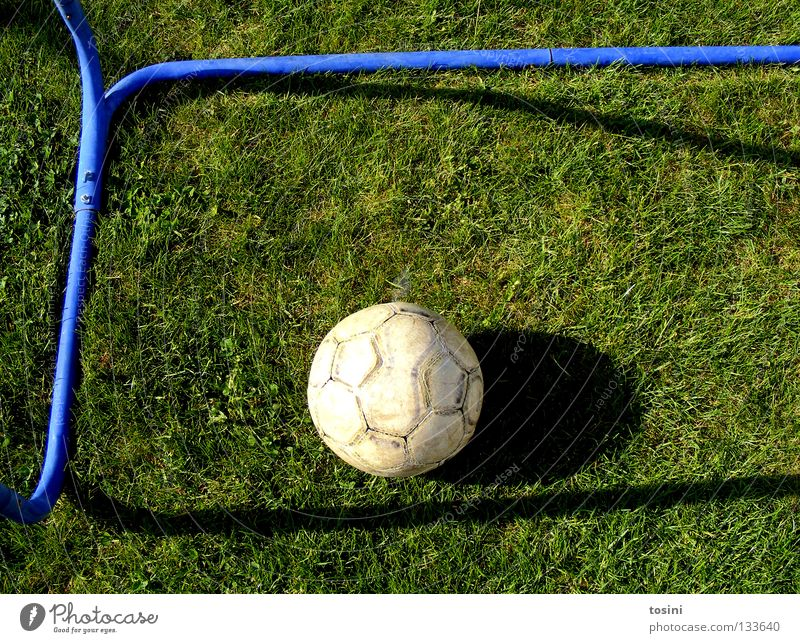 Goal! Rod Grass Leather Green Round Calm Sports Shadow Soccer Goal 1 Bird's-eye view Deserted Colour photo Grass surface Lie Foot ball
