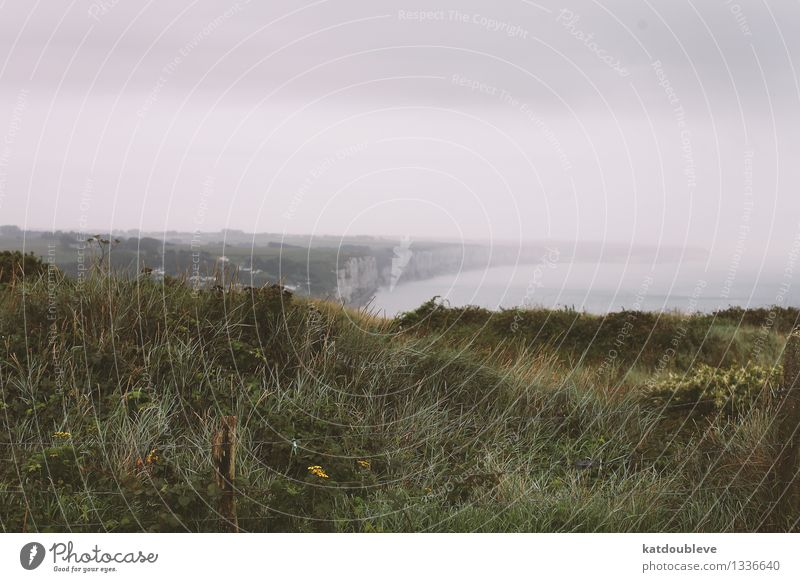 fecamp Environment Nature Landscape Plant Clouds Autumn Bad weather Fog Grass Wild plant Meadow Rock Coast Bay Ocean Deserted Binoculars Water Far-off places