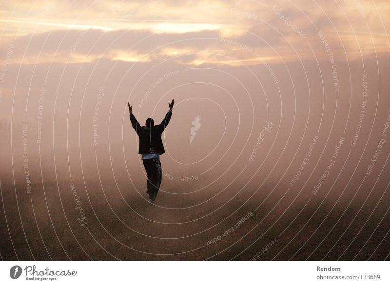 Sky Nature Sun Red Joy Meadow Freedom Happy Dream Moody Fog Success Happiness Stars Cool (slang)