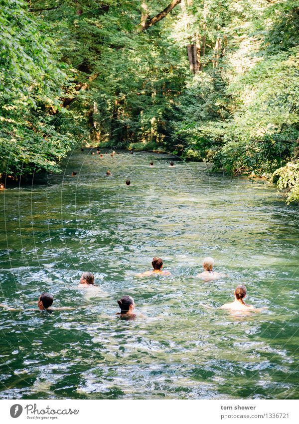 River Swim Human being Family & Relations Friendship Group 18 - 30 years Youth (Young adults) Adults Environment Nature Plant Water Beautiful weather Tree