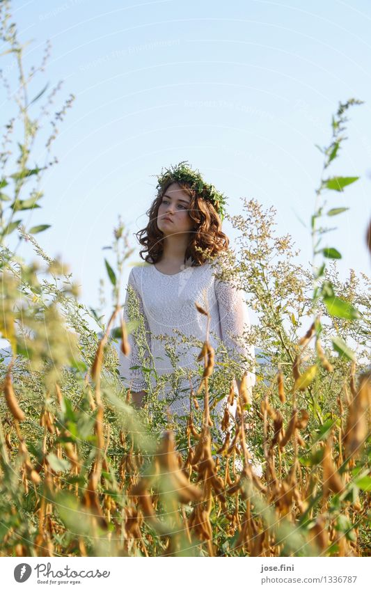 queen of the meadows Beautiful Schoolchild Feminine Girl 13 - 18 years Youth (Young adults) Landscape Sky Cloudless sky Summer Beautiful weather Plant Field