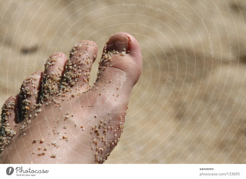foot peeling à la nature Toes Toenail Personal hygiene Vessel Molt Beach Sand Pamper Well-being Relaxation Vacation & Travel 5 Ocean Beautiful Stone Minerals