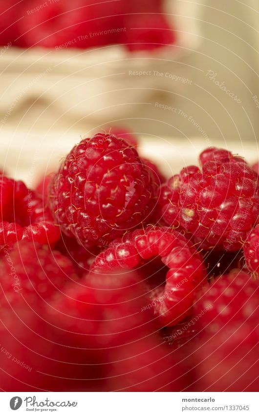 dessert Food Fruit Dessert Raspberry Environment Nature Authentic Simple Fresh Healthy Small Delicious Near Natural Round Juicy Sweet Dry Wild Soft Red