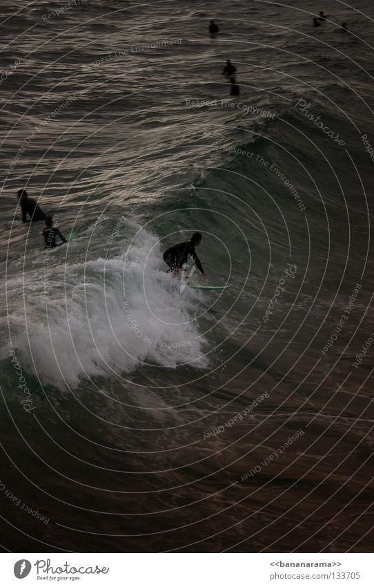Water Ocean Beach Waves Surfing Surfer Funsport Surfboard Whitewater