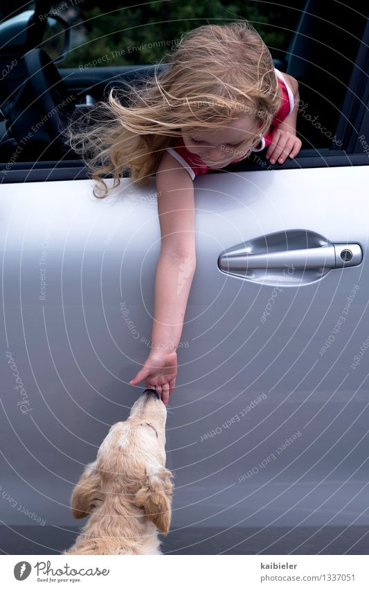 Human being Dog Child Hand Joy Animal Girl Feminine Together Friendship Car Blonde Infancy Touch Contact Trust