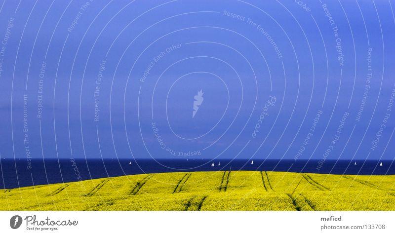 Water Sky Ocean Blue Clouds Yellow Spring Watercraft Field Horizon Hill Sailing Baltic Sea Smooth Sail