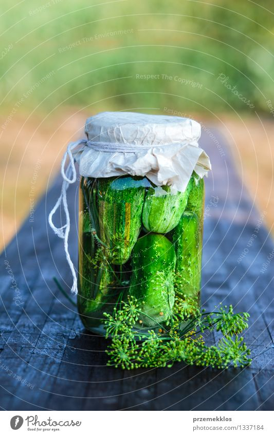 Pickled cucumbers made of home garden vegetables and herbs Food Vegetable Herbs and spices Organic produce Garden Summer Fresh Natural Green Basket Copy Space