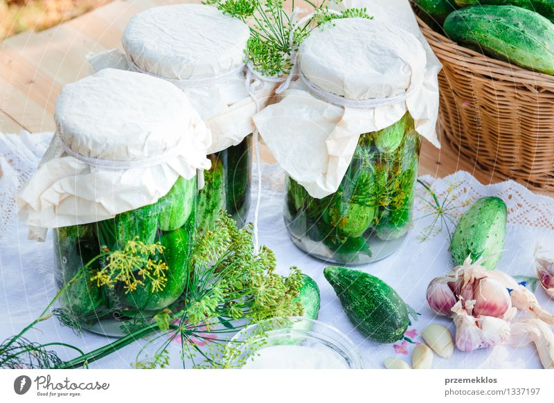 Pickled cucumbers made of home garden vegetables and herbs Vegetable Herbs and spices Organic produce Garden Summer Fresh Natural Green Basket Dill food Garlic