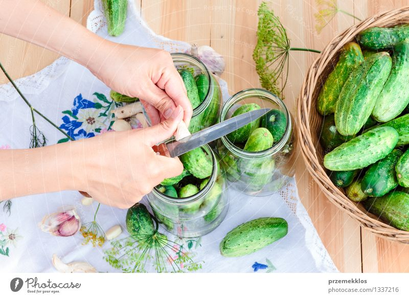 Pickling cucumbers with home garden vegetables and herbs Woman Green Summer Hand Adults Natural Garden Food Fresh Herbs and spices Vegetable Organic produce