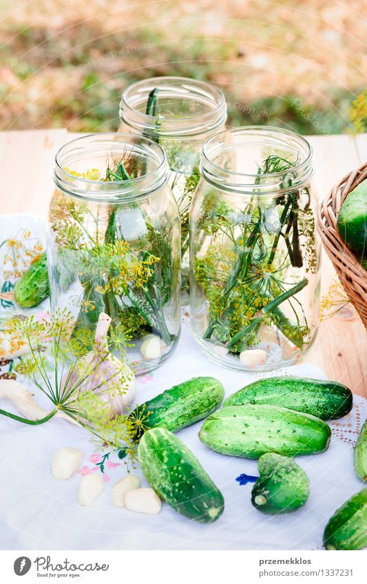 Pickling cucumbers with home garden vegetables and herbs Food Vegetable Herbs and spices Organic produce Garden Summer Fresh Natural Green Basket Dill Garlic
