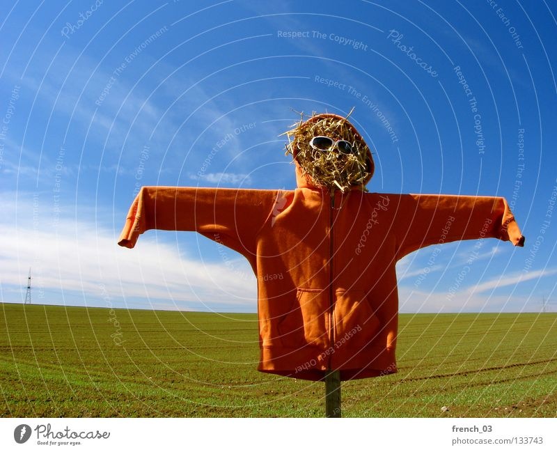 partial orange Scarecrow Hideous Hooded (clothing) Field Sweater Jubilee 100 Straw Sunglasses Clouds Sky Eyeglasses Wood Ghosts & Spectres  Creepy Loneliness