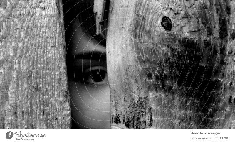 White Black Eyes Wood Search Near Wooden board Column Wood grain Spy