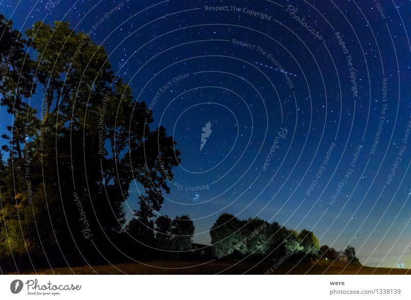 Sky Nature Landscape Environment Illuminate Large Stars Infinity Night sky Gigantic Astronaut Meteor Astronomy Constellation Milky way