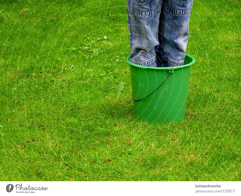 Pot plant winter hardy Child Boy (child) Tub Bucket Grass Meadow Green Knee Growth Maturing time Spring Summer Garden Park Legs Lawn Joy be inside Feet washing