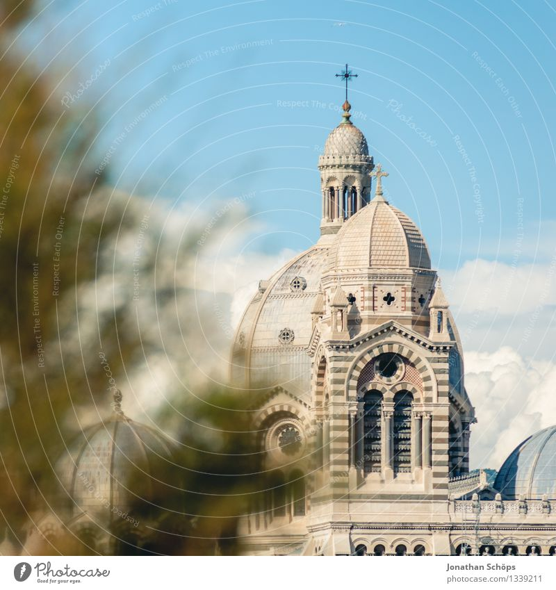 Sky City Heaven Tree Architecture Religion and faith Bright Esthetic Church Roof Skyline France Summer vacation Downtown Christian cross Old town