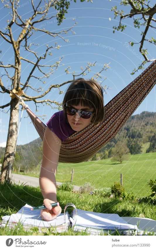 hammock Hammock Study Calm Education Relaxation school stress Write Lessons Academic studies