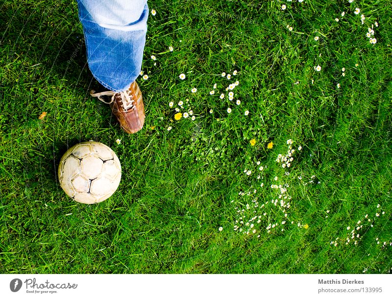 Green Plant Summer Sports Meadow Playing Garden Air Footwear Soccer Jeans Ball Lawn Leisure and hobbies Pants Athletic