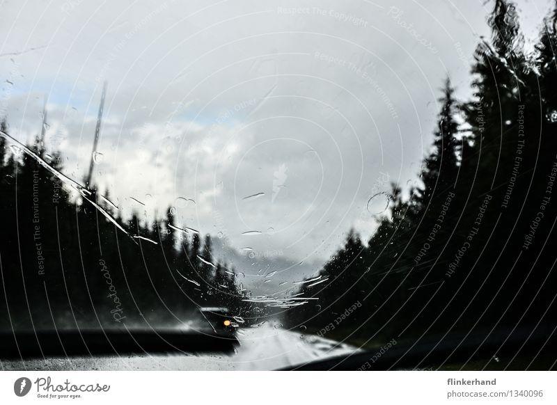 Blue White Landscape Forest Black Street Rain Car Future Driving Motoring Road traffic Wipe Windscreen wiper