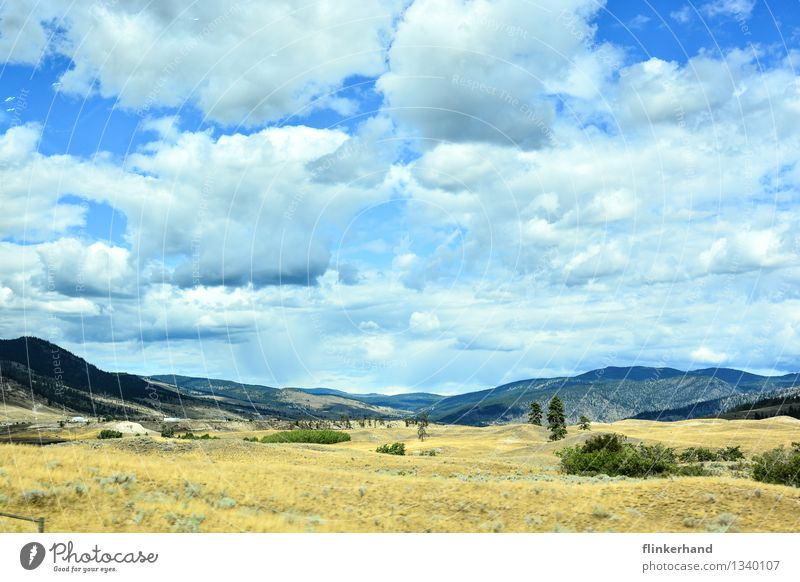Sky Blue Green Clouds Far-off places Brown Sand Beautiful weather Hill Dry Desert Steppe Wild West