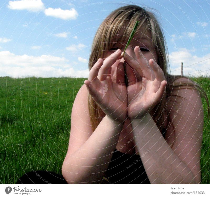 Woman Hand Youth (Young adults) Green Blue Summer Clouds Meadow Grass Arm Fingers Open Blow Blade of grass Tone Noise