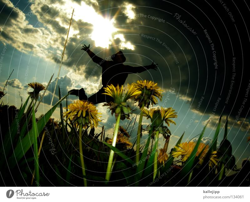 Human being Man Plant Summer Sun Landscape Clouds Joy Emotions Spring Meadow Lighting Movement Grass Death Happy