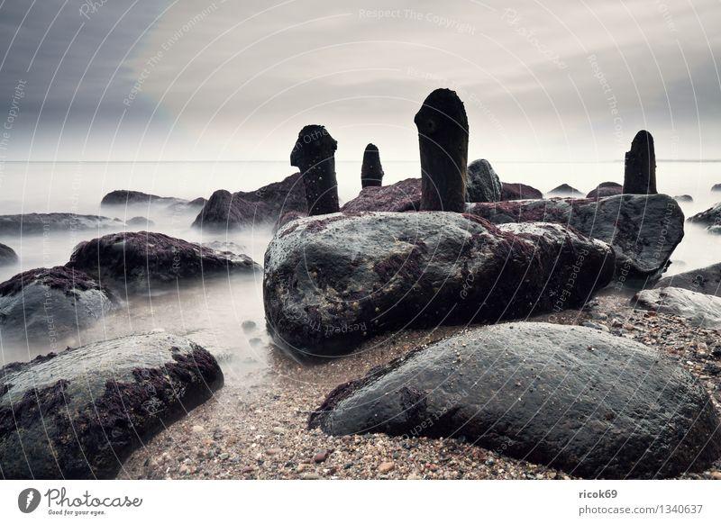 Baltic coast Beach Nature Landscape Water Clouds Rock Coast Baltic Sea Ocean Stone Wood Calm Break water Heiligendamm Mecklenburg-Western Pomerania Sky Stony