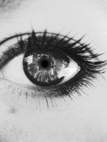 eyes open. Face Make-up Mascara Human being Woman Adults Eyes Gray Eyelash Wearing makeup black white B/W faces lashes Black & white photo