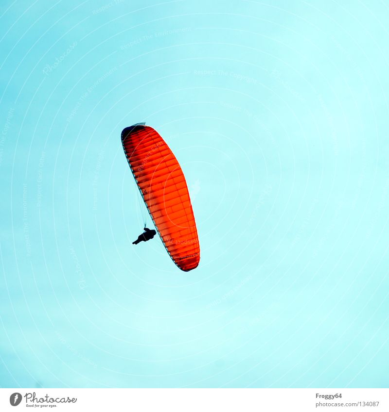 high up Paraglider Air Clouds Pilot Black Schauinsland Bird Joy Leisure and hobbies Extreme sports Flying Aviation Sky Blue Orange Wind Weather Mountain Sun