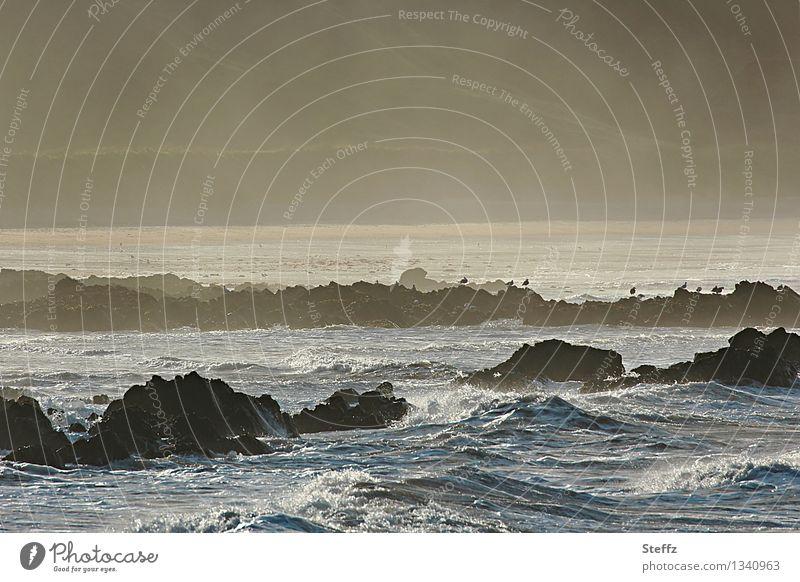 the Scottish Bight North Sea Scotland Nordic romanticism Maritime Nordic nature Nordic light Landscape Air Water Waves coast certain light Tide Lakeside Bay