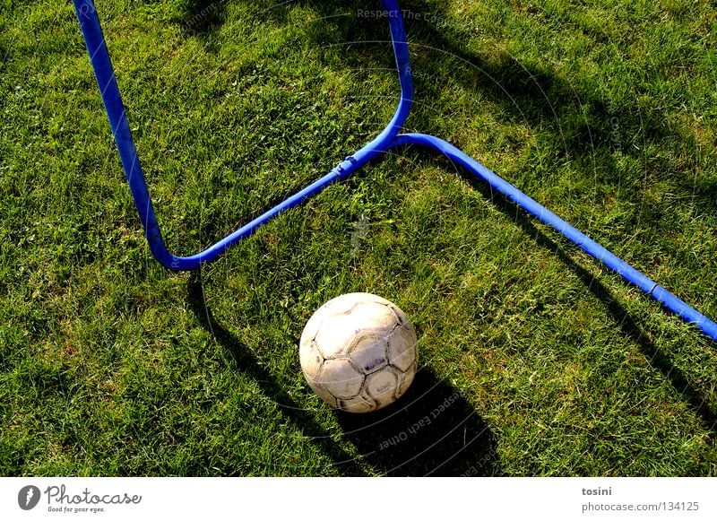 Green Calm Sports Grass Garden Infancy Soccer Foot ball Round Lawn Grass surface Passion Goal Leather Strike Rod