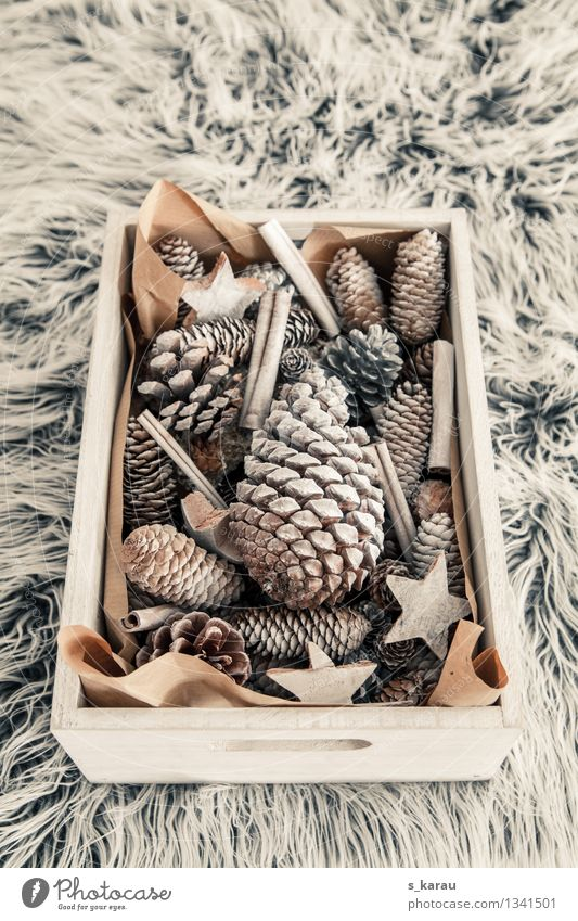 christmas decoration Winter Living or residing Decoration Feasts & Celebrations Christmas & Advent Wood Cuddly Natural Warm-heartedness Creativity Cone