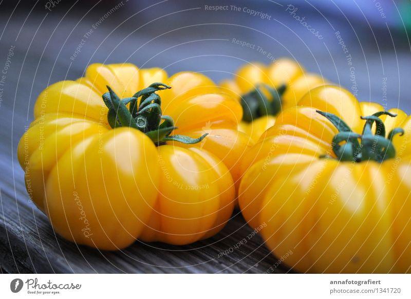 Nature Summer Yellow Fresh Harvest Tomato Gardening Thanksgiving