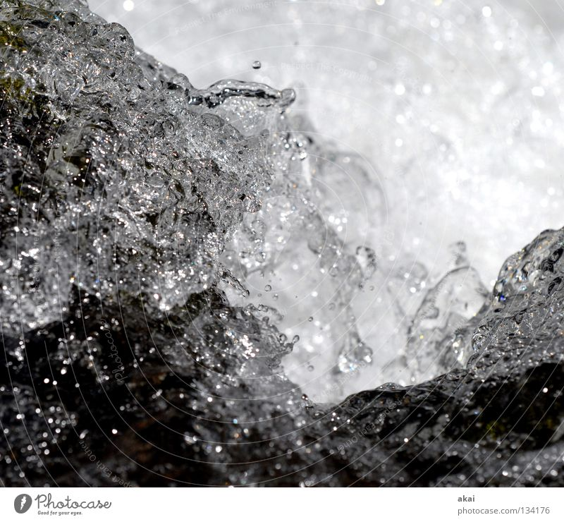 Wet Mountain stream Brook Effervescent White crest Cold Reflection River Water Waterfall Inject Black & white photo Drops of water Splash of water Close-up