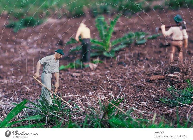 Miniwelten - Gardening II Model-making Model railroad Work and employment Gardener Working in the fields Horticulture Agriculture Forestry Human being Masculine