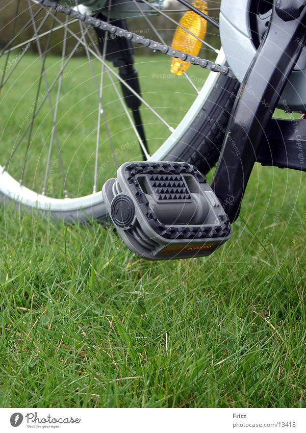 Summer Bicycle Transport Trip Pedal