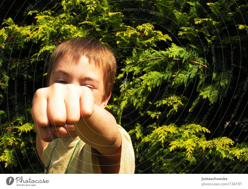 Child Hand Boy (child) Garden Communicate Strong Loudspeaker Fight Beat Fist Martial arts Boxer