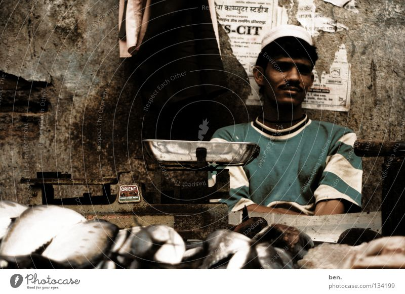 Nutrition Fish Stand India Trade Markets Sell Scale Merchant Asians Indian Fishmonger