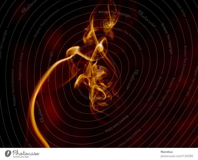 Red Yellow Dark Warmth Orange Background picture Wind Power Blaze Dangerous Force Threat Transience Romance Idea Physics