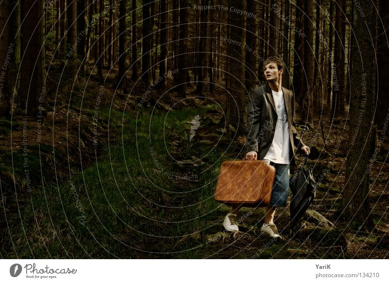 Man Old Tree Loneliness Forest Dark Stone Brown Going Hiking Search Crazy Grief T-shirt Jeans To go for a walk