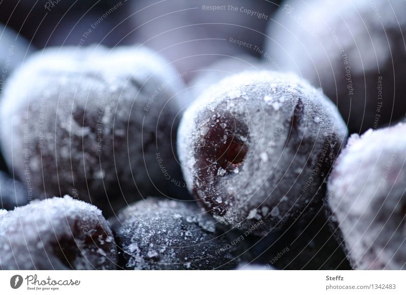 winter stock Food Fruit Dessert Cherry Nutrition Organic produce Vegetarian diet Frozen foods Freeze Fresh Cold Beautiful Gray Violet White Nature Supply
