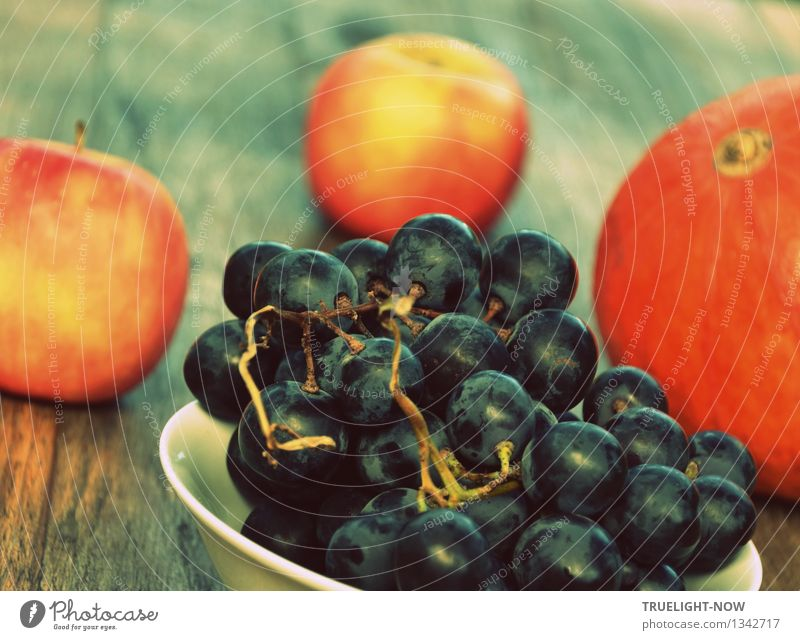 Nature Blue Colour White Eroticism Yellow Warmth Natural Healthy Happy Food Fruit Orange Fresh Idyll Nutrition