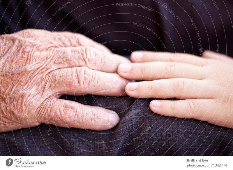 Human being Old Hand Warmth Love Emotions Senior citizen Boy (child) Together Masculine Authentic Infancy Joie de vivre (Vitality) Warm-heartedness Touch Help