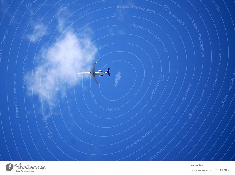 And away! Airplane Passenger plane Clouds Sky White Aviation Vacation & Travel Firmament Blue