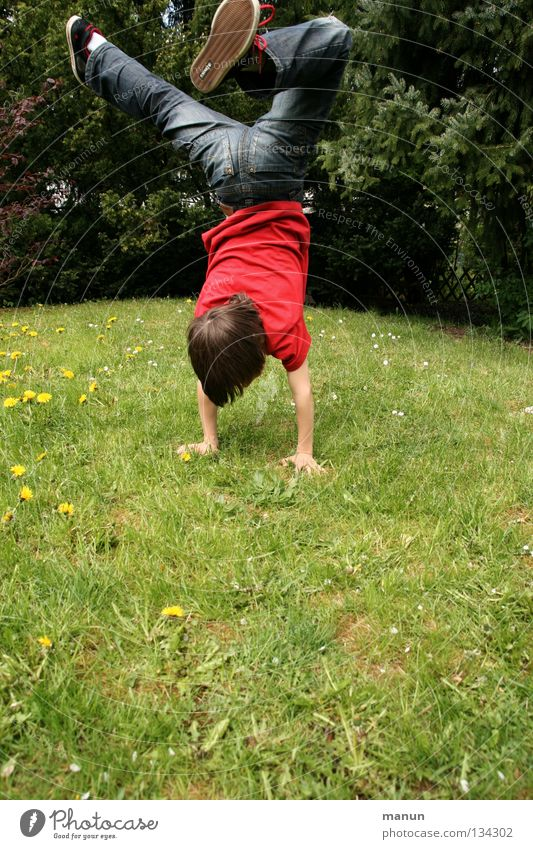 Youth (Young adults) Tree Vacation & Travel Joy Playing Boy (child) Movement Grass Happy Jump Garden Healthy Dance Leisure and hobbies Action Child