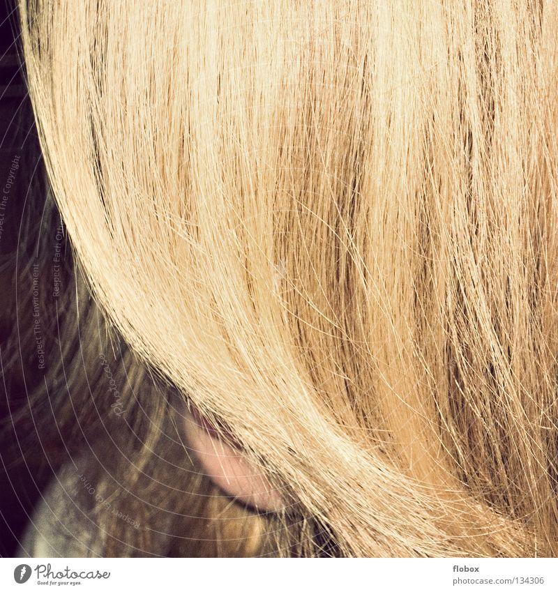 The Curtain Blonde Hair and hairstyles Long Drape Floor mat Timidity Woman Beautiful Gold Hair loss Organ Disheveled Maturing time Growth Pelt Cut Fresh