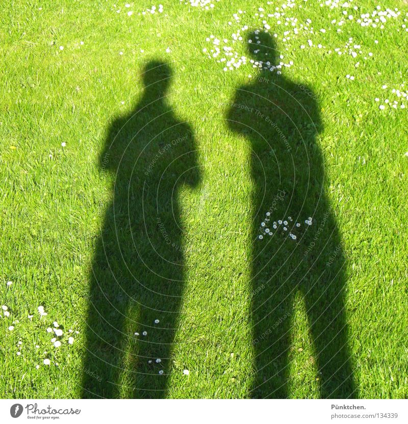 Human being Green Sun Summer Meadow Dark To talk Grass Garden Small Legs Couple Bright 2 Shadow Together
