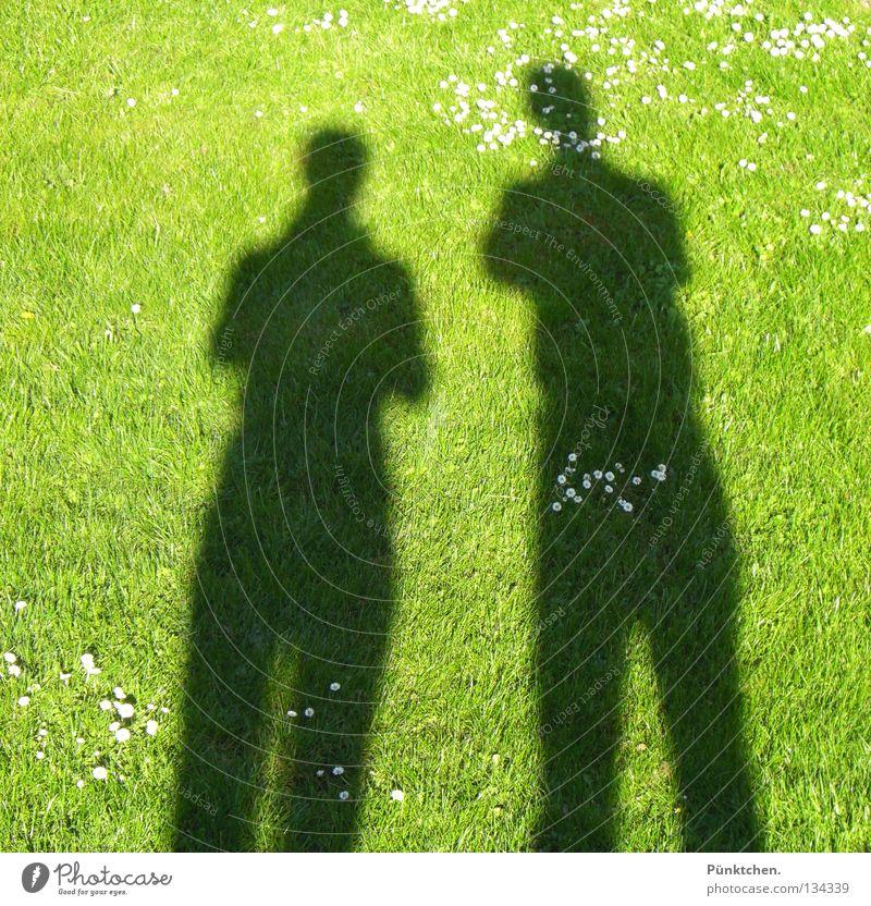 Human being Green Sun Summer Meadow Dark To talk Grass Garden Small Legs Couple Bright 2 Shadow Together