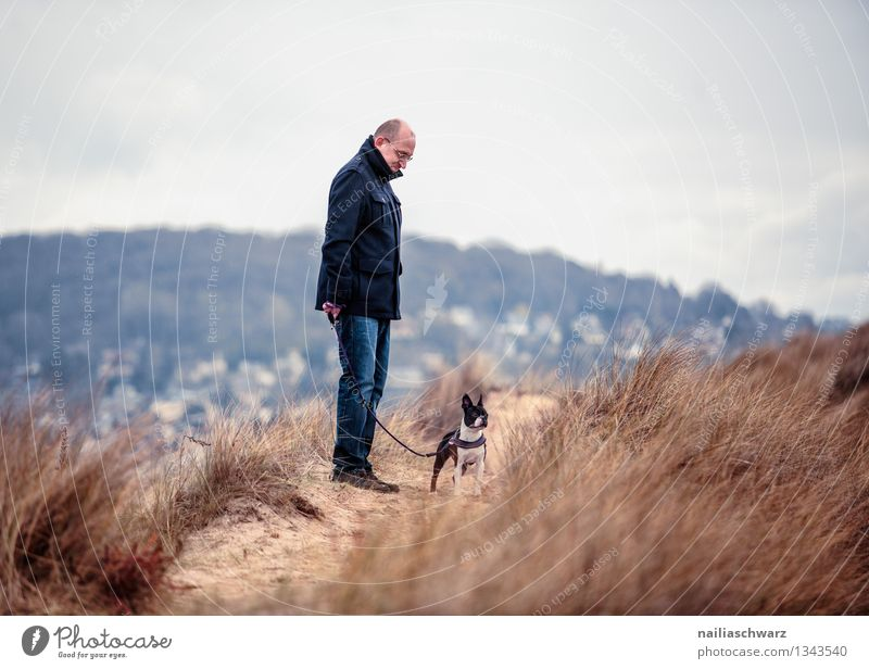 Man with Boston Terrier Joy Playing Vacation & Travel Beach Ocean Adults 1 Human being Nature Landscape Sand Bad weather Dog Animal Observe Looking Wait