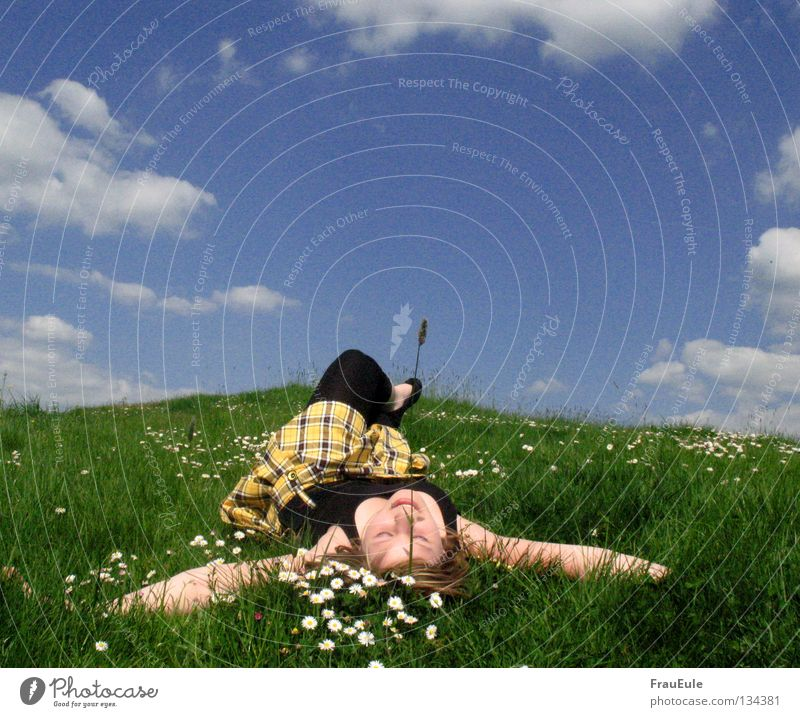 Woman Sky Blue Green Summer White Flower Relaxation Clouds Joy Mountain Adults Yellow Meadow Laughter Legs